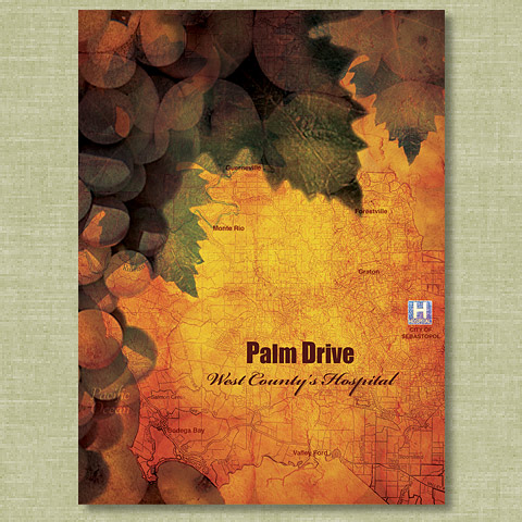 Palm Drive Hospital presentation cover