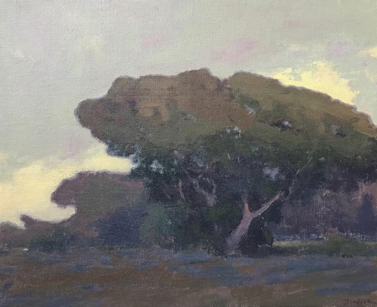 Oak Cloud