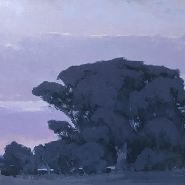 Violet Oak