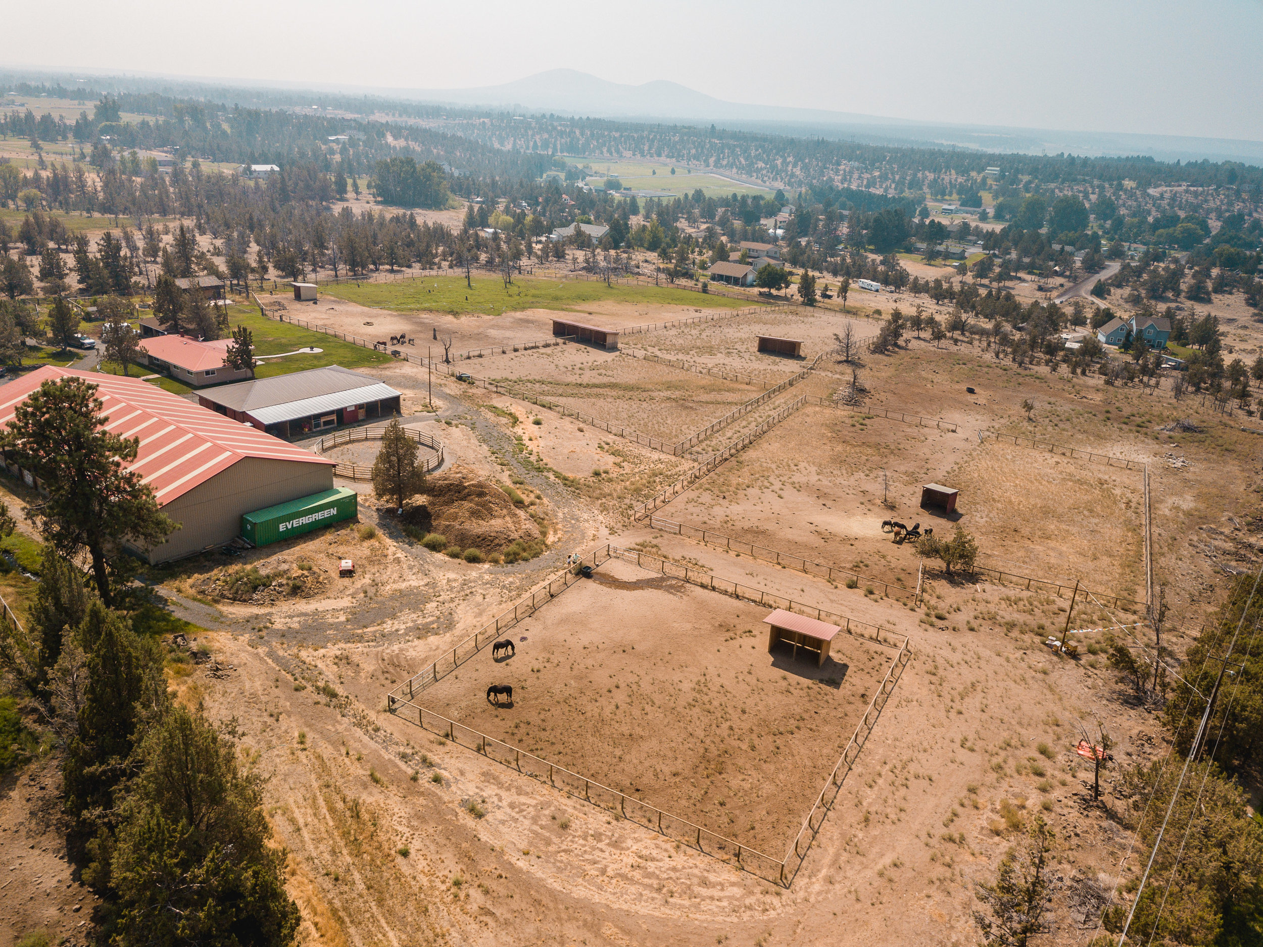 Twenty acres of sanctuary in rural, central Oregon where the horses are loved and cared for.