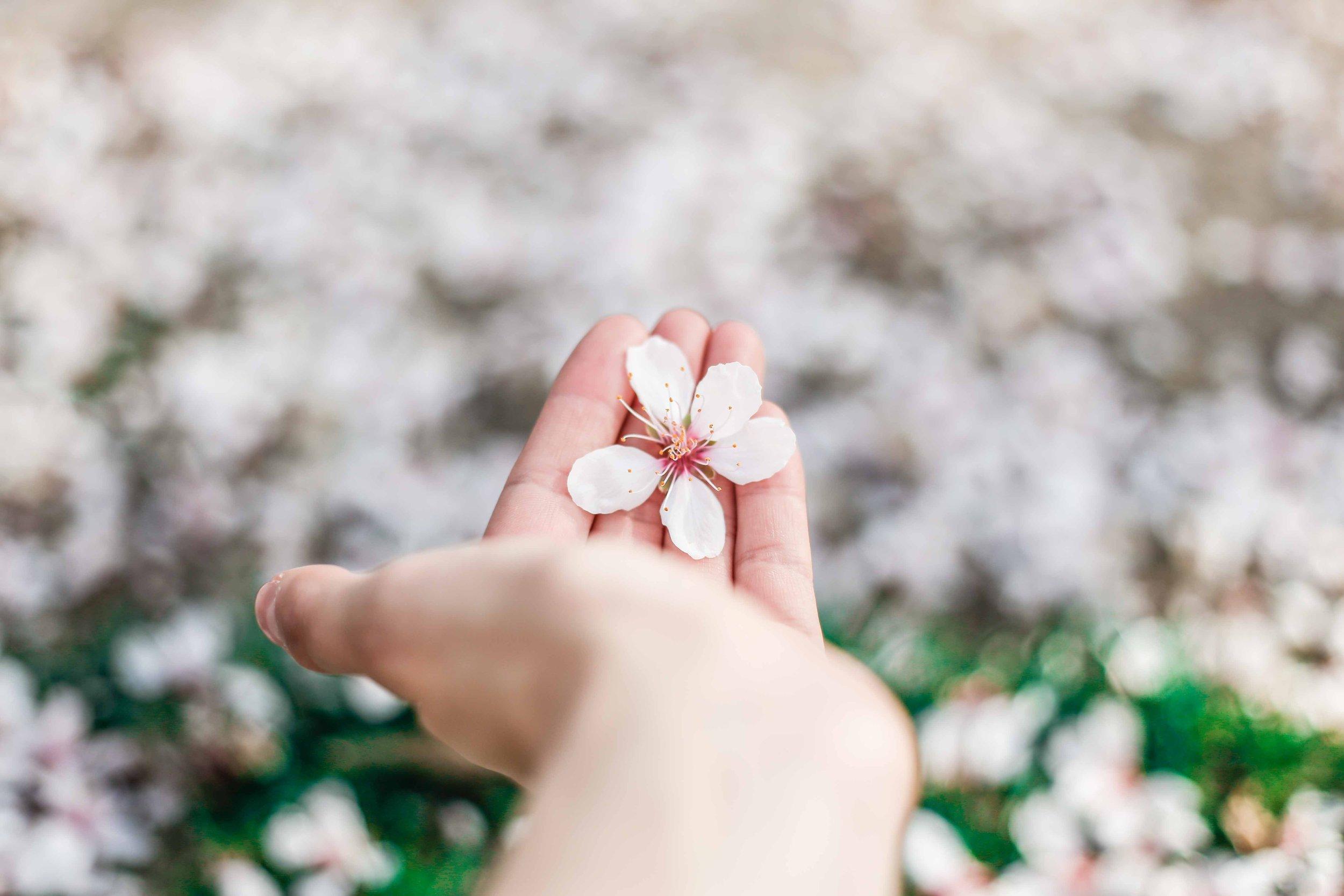 Come curare le macchie sulla pelle delle mani? -