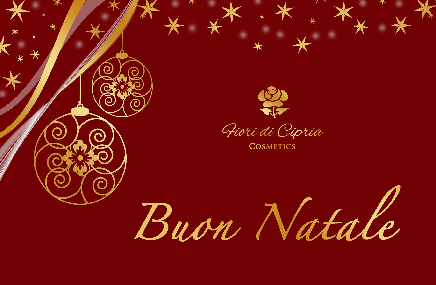 Buon Natale FB e Sito.jpg