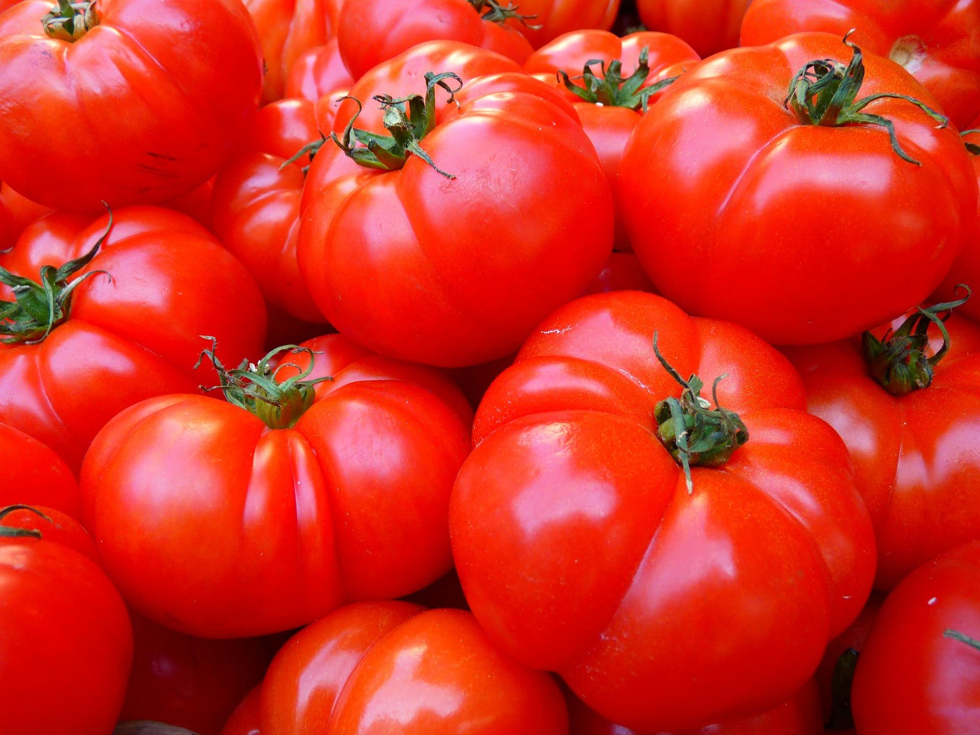 POMODORO - Composto quasi per il 95% da acqua, un pomodoro contiene ca. 18 kcal. Ricco di licopene, l'antiossidante per eccellenza, è anche un'ottima fonte di potassio, magnesio e fosforo ed è ricchissimo di vitamine C, A e beta-carotene. Inoltre, è un utile supporto per la pelle nei mesi dell'abbronzatura. Con i pomodori si possono preparare gustose insalate ipocaloriche semplicemente aggiungendo un filo d'olio extravergine di oliva, basilico fresco, un pizzico di sale e qualche erbetta aromatica.