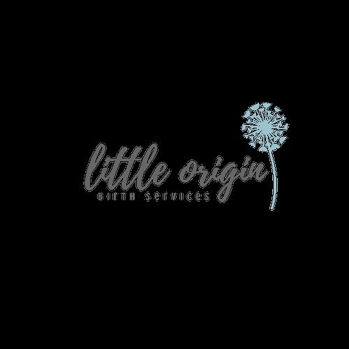 little origin birth services