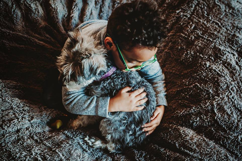 Photo courtesy of  Tara Lee Photography , check our our  blog  with Tara's tips on pet photography.