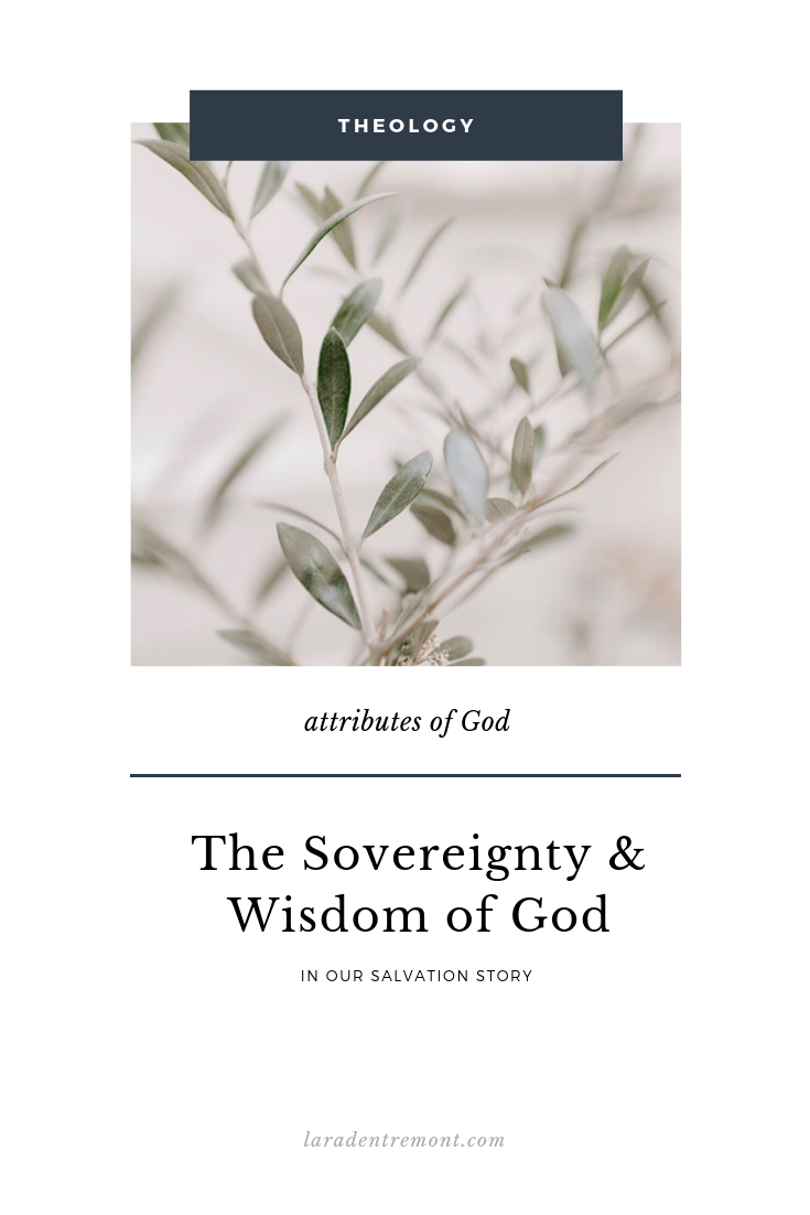 The Sovereignty and Wisdom of God.png