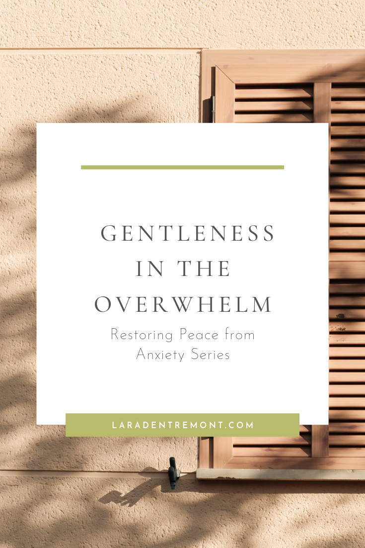 Gentleness in the Overwhelm.png