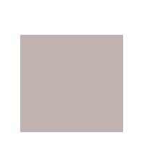 Kauno USA Weightlifting Coaching - 01.png