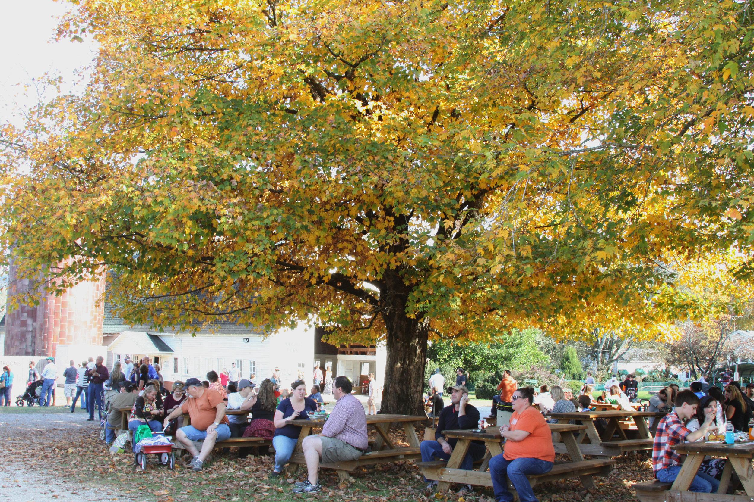 Weekend Group McDonald Farm Tennessee