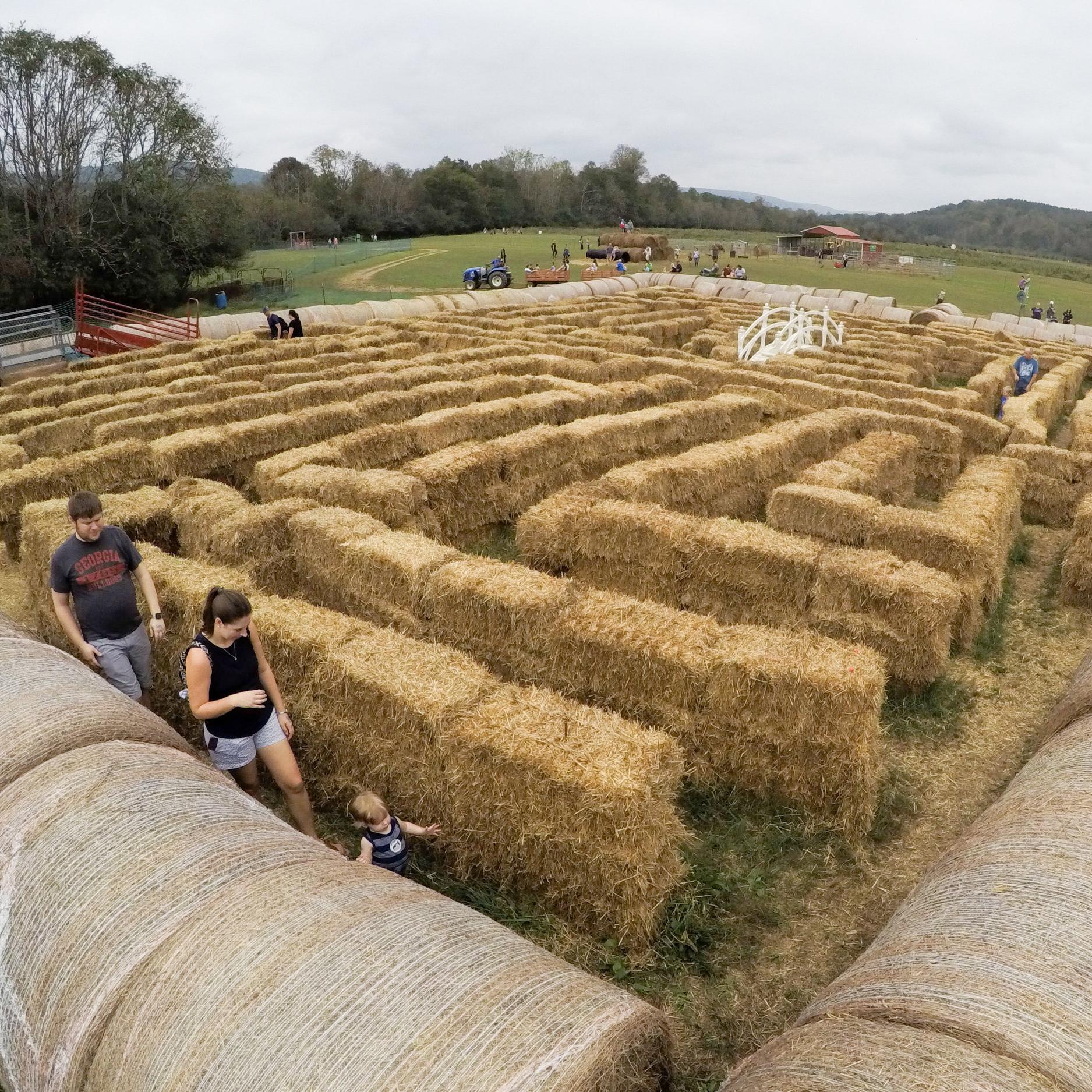 Hay Maze McDonald Farm Tennessee