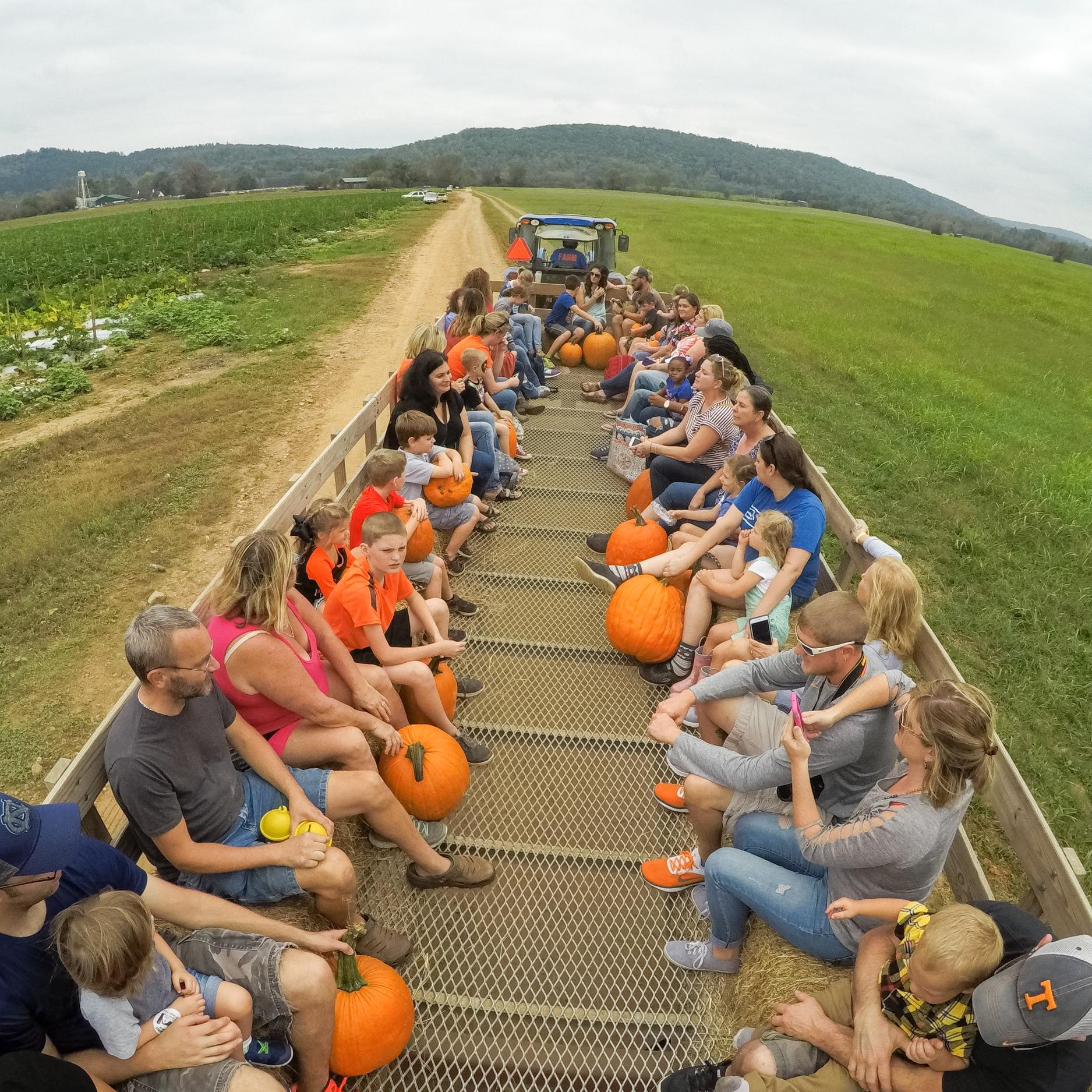 Hay Ride Pumpkin Patch McDonald Farm Tennessee