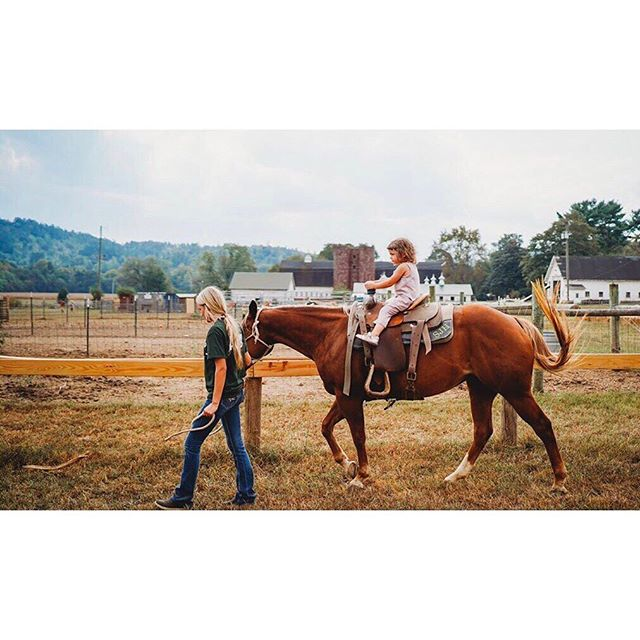 Thinking about what to do with the kiddos this weekend? Visit McDonald Farm. You can run through a corn maze, take a hayride to a pumpkin patch, jump in the corn cribs, or enjoy a real pony ride. Photo credit: brookebaggerphoto #localfarms #farmlife #fallfestivals