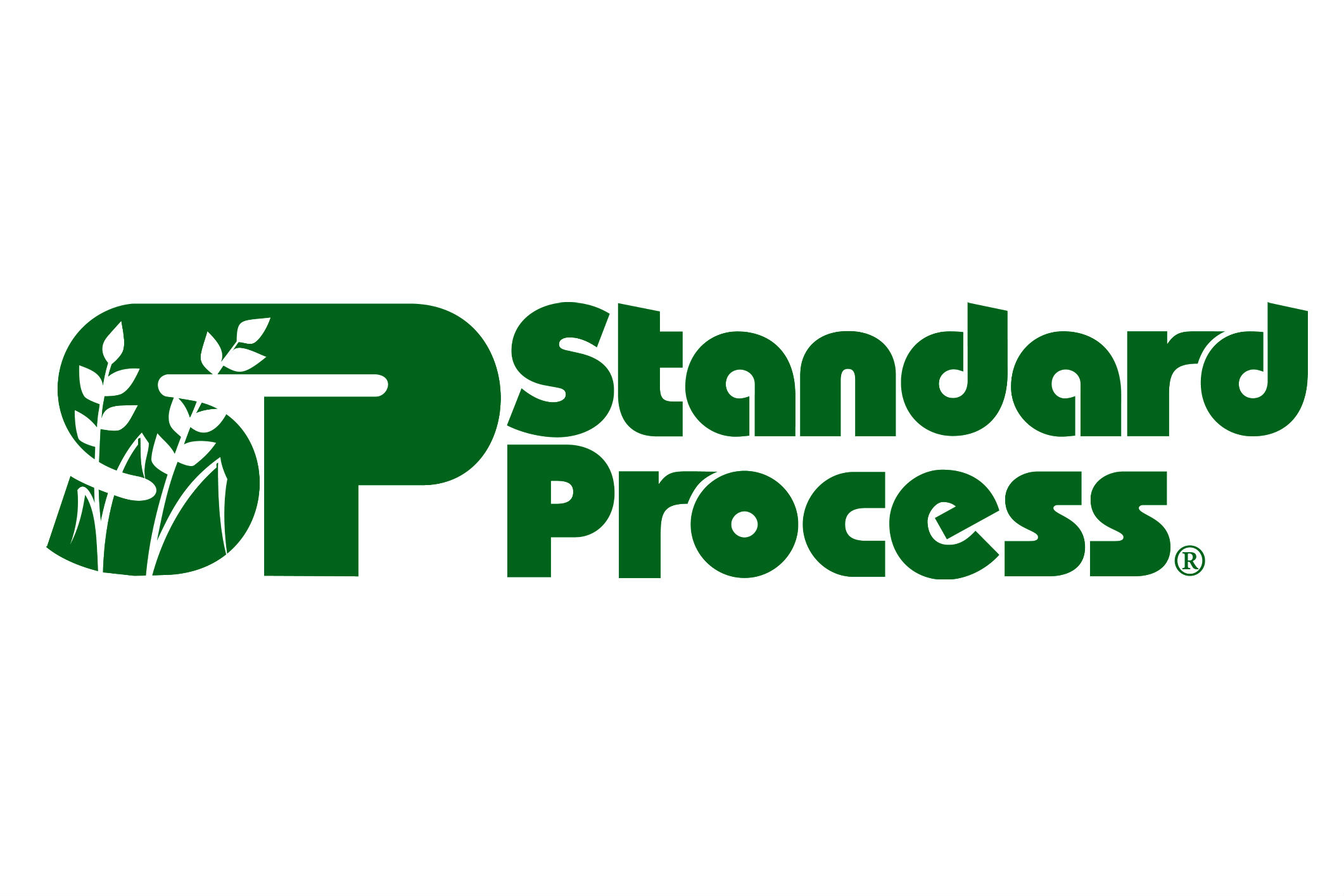 Standard-Process-Feature-Image.jpg