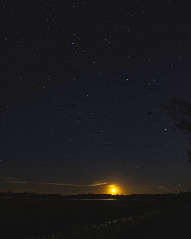Light is precious in a world so dark. . . . . .  #nightsky #ig_nightphotography #astrophotography #universetoday #nightscape #fs_longexpo #longexpoelite #rsa_night #starrynight #milkywaygalaxy #stargazing #skymasters #longexposure_shots #astrophoto #nightimages #milkywaychasers #nightshooters #natgeospace #night_shooterz #ig_astrophotography #longexpo #nightscaper  #canonphotos #canoneos #canonrebel #canonphotographer #focalmarked