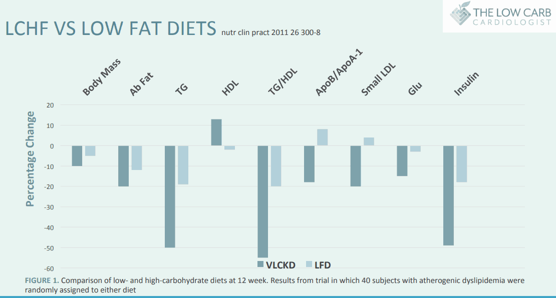 Very Low Carb Ketogenic Diet (VLCKD) vs Low Fat Diet (LFD)
