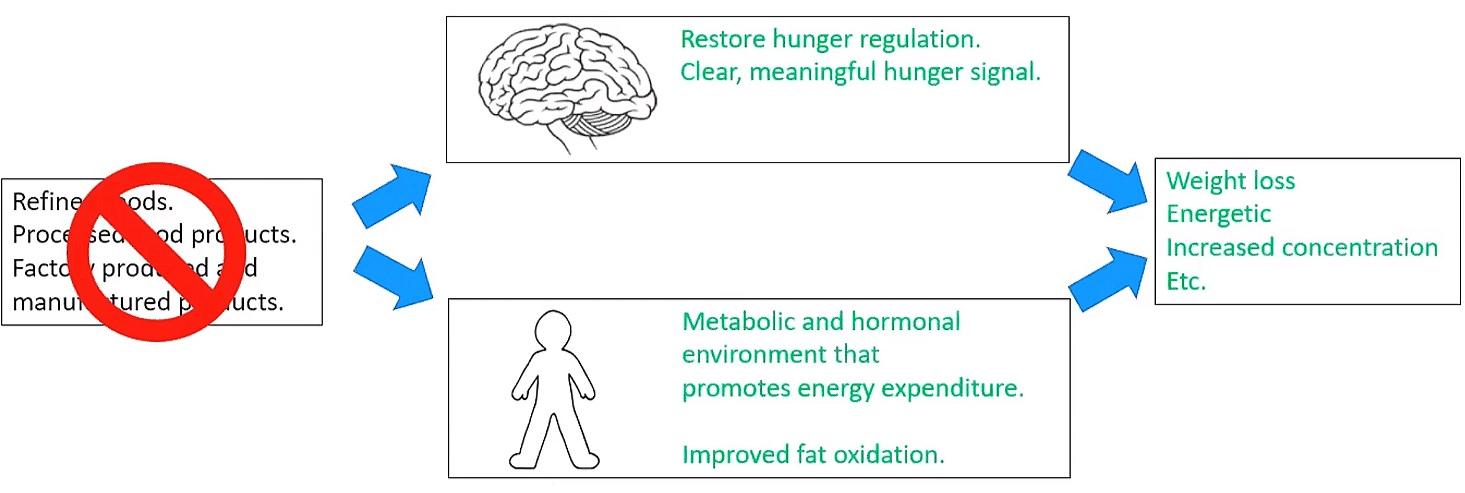Obesity+reversed.jpg