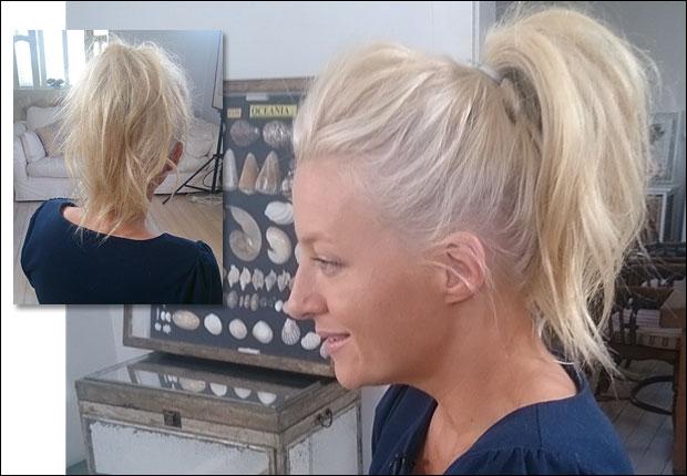 ponytail main.jpg