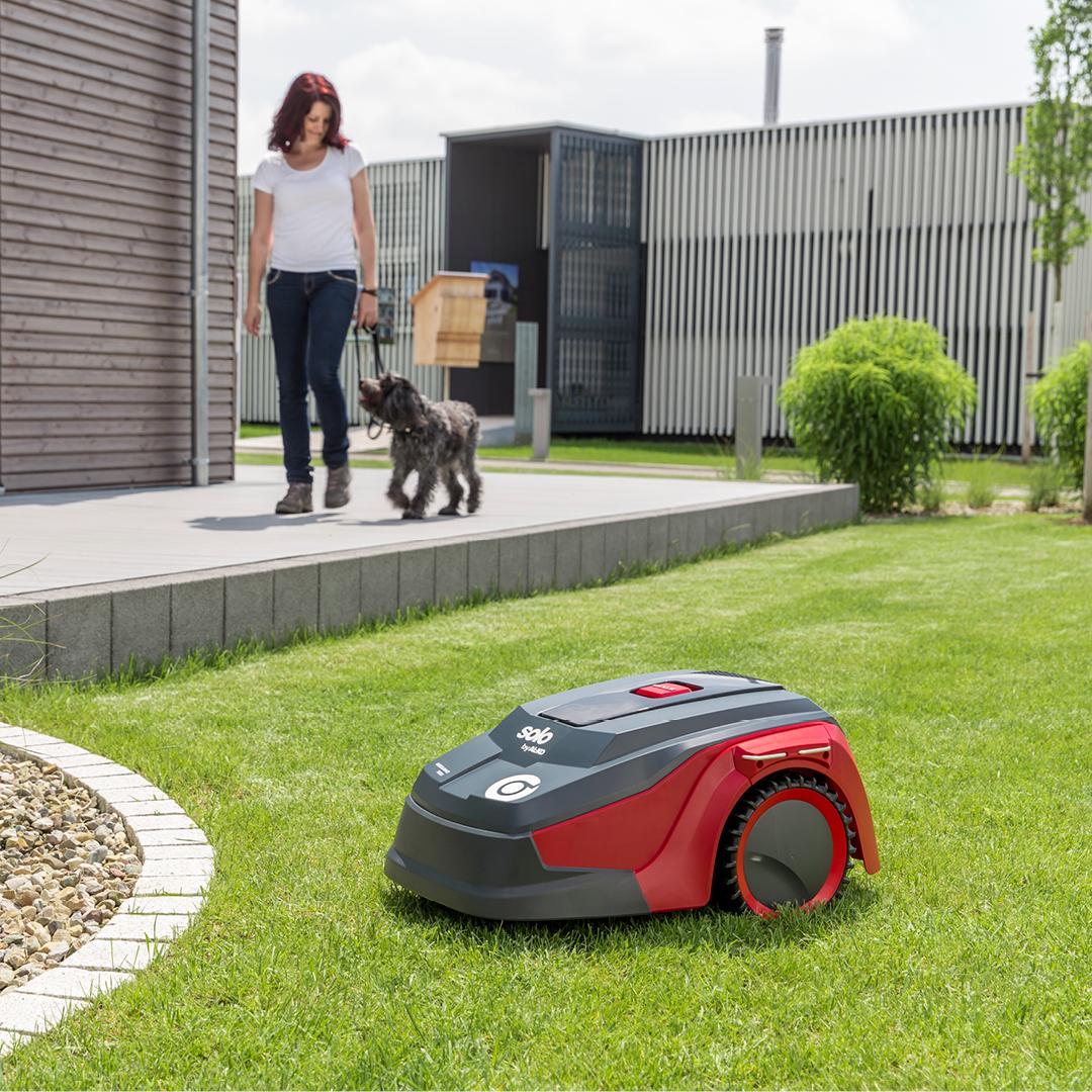 robo lawn.jpg