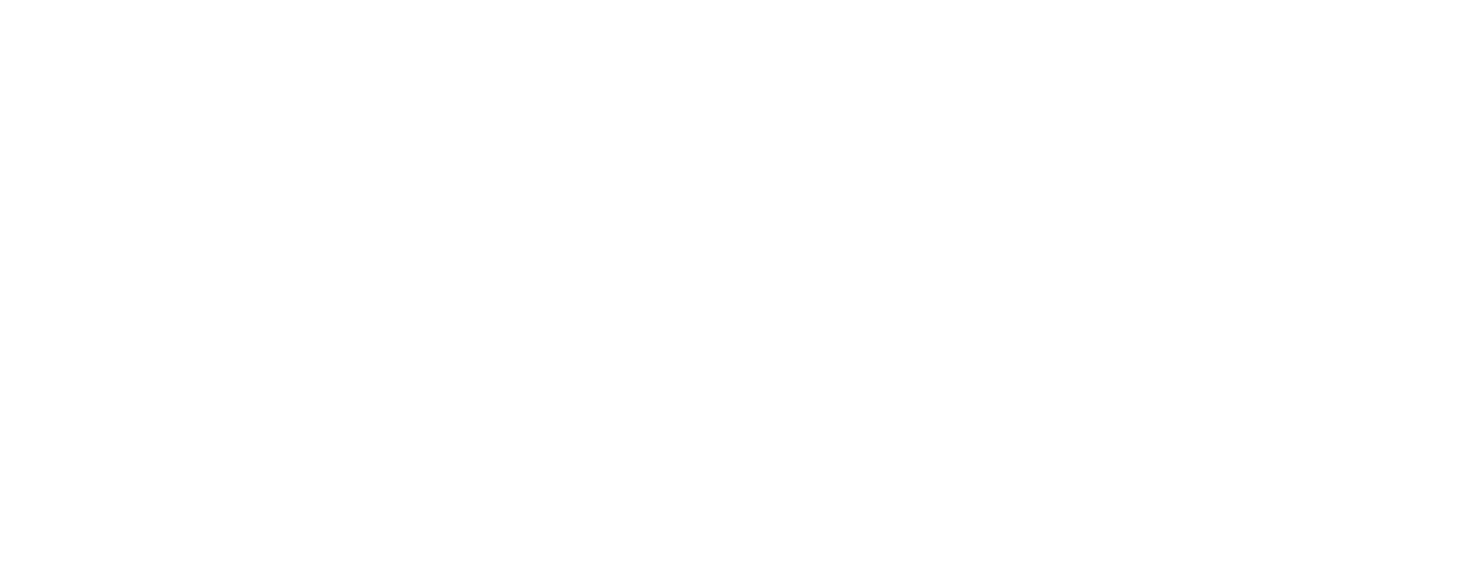 Website Visuals - white RT.png