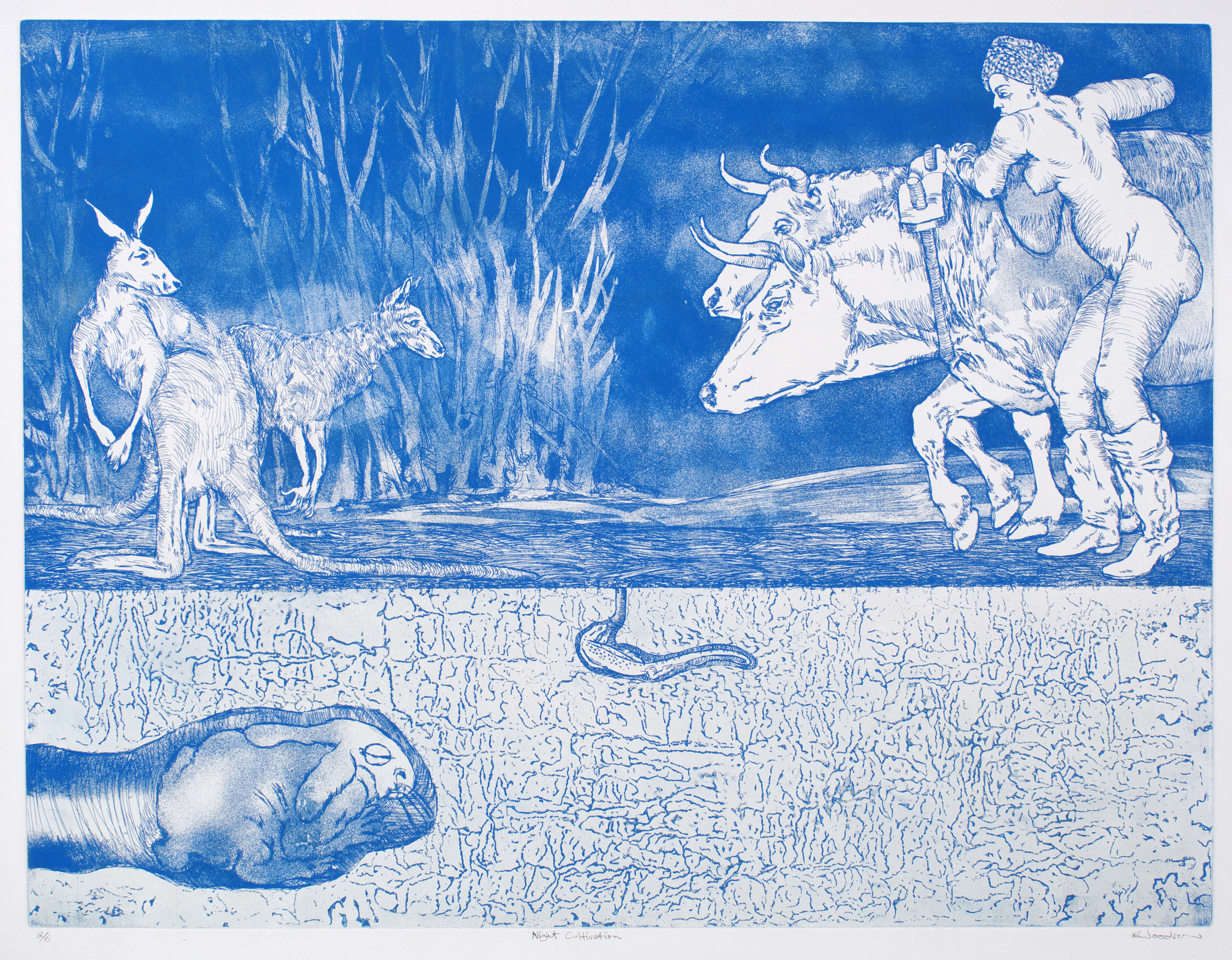 Night Cultivation   etching and aquatint (copper plate) 590 x 795 mm. 2/6 in this edition.