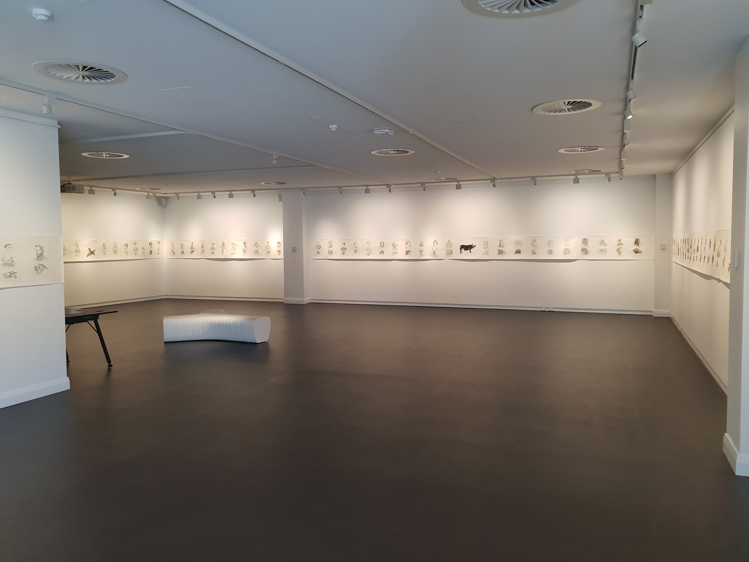 Drawing Physiognomy: the Complete Zoomorphic Archive   Installation view