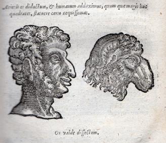 Figure 1 Anon. woodcut Dela Porta, Human Physiognomy 1650 edition.