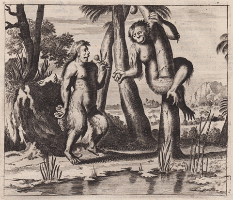 Anon. after Arnoldus Montanus Baviaan Orang-Outang etching on laid paper 1669.