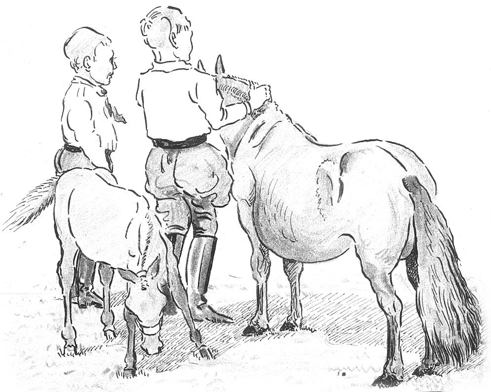 Tekening van Bernard met potlood en inkt.