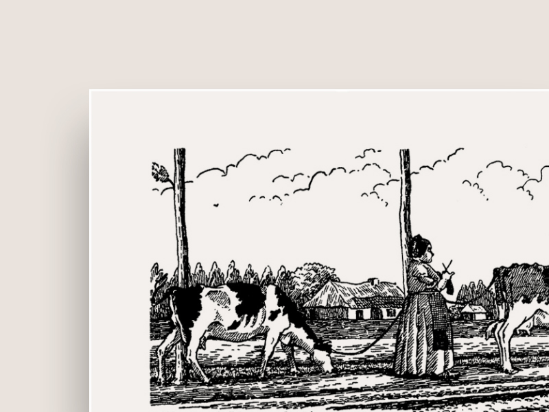 bvd_publicatie_landbouw_01.jpg