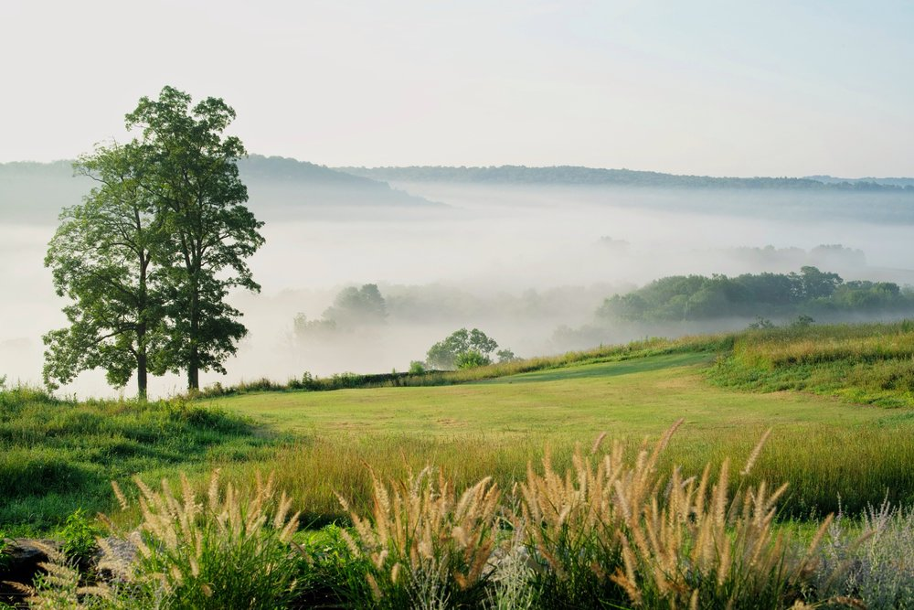 Spring Hill Home Image.jpg