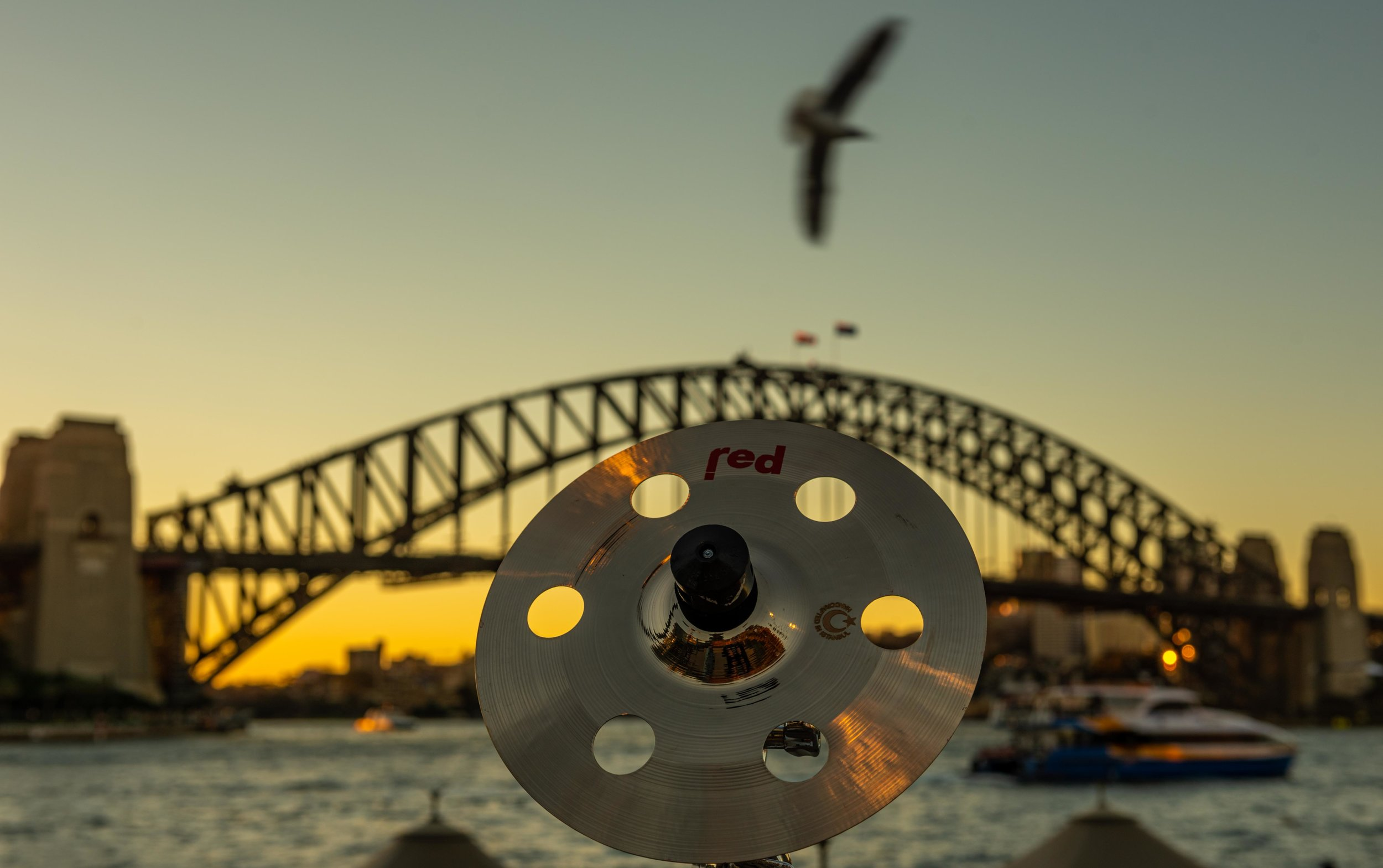 Sydney (6 of 48).jpg