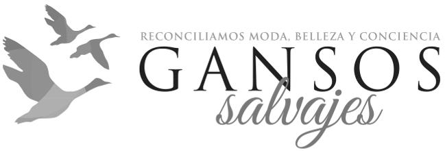 gansos salvajes_1100.jpg