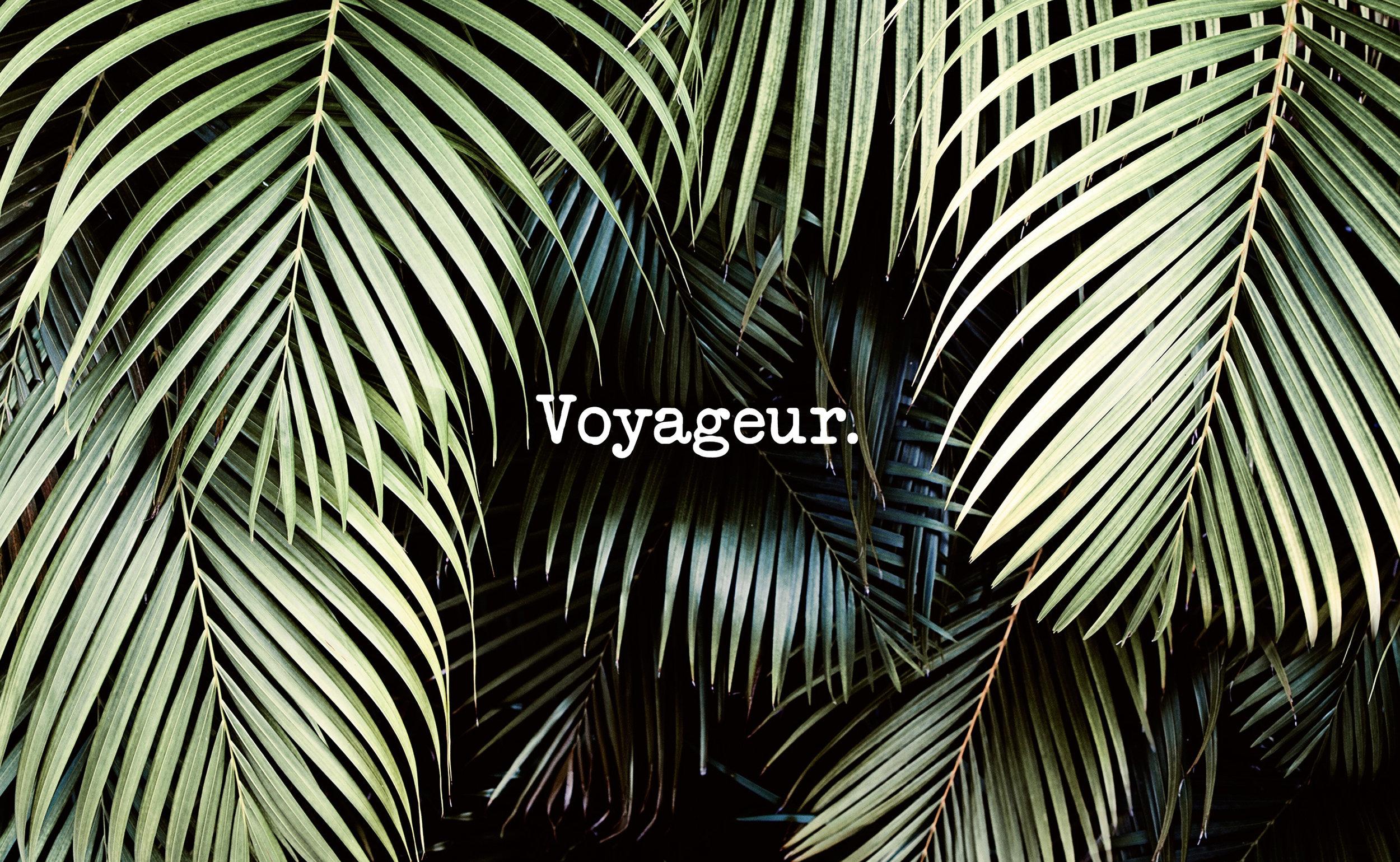 Voyageur_Intro.jpg