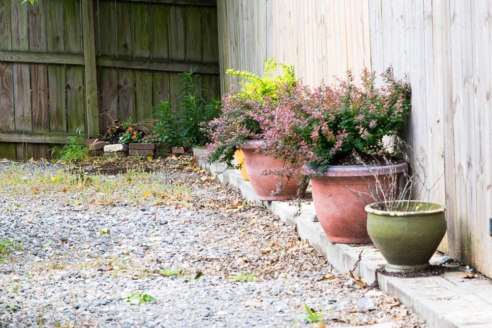 Oregon-Hill-gardens-3668-1.jpg