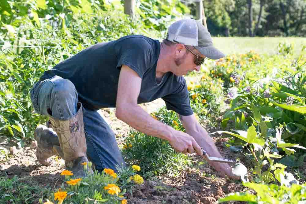 USV-garden-0159-1.jpg