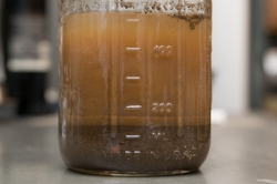 Soil separating into layers.