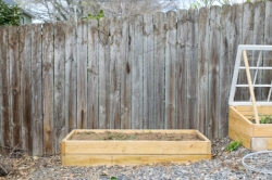This blank garden fence needs dressing up.