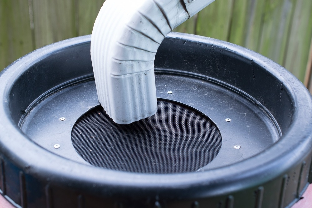 Make sure the screen is securely fastened in your garden rain barrel lid.