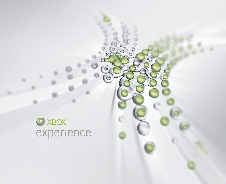 microsoft_experience.jpg