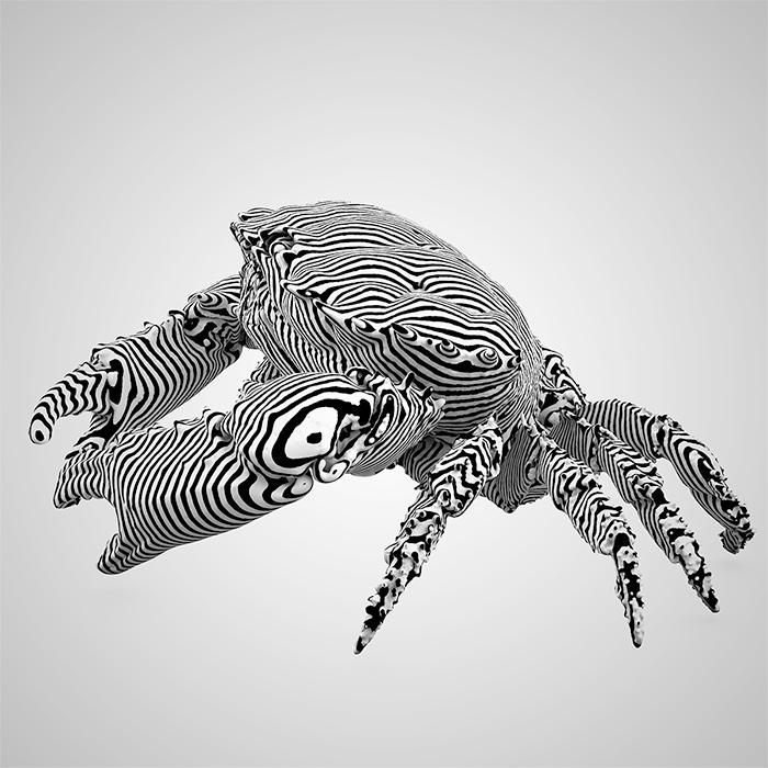 krabbe1.jpg