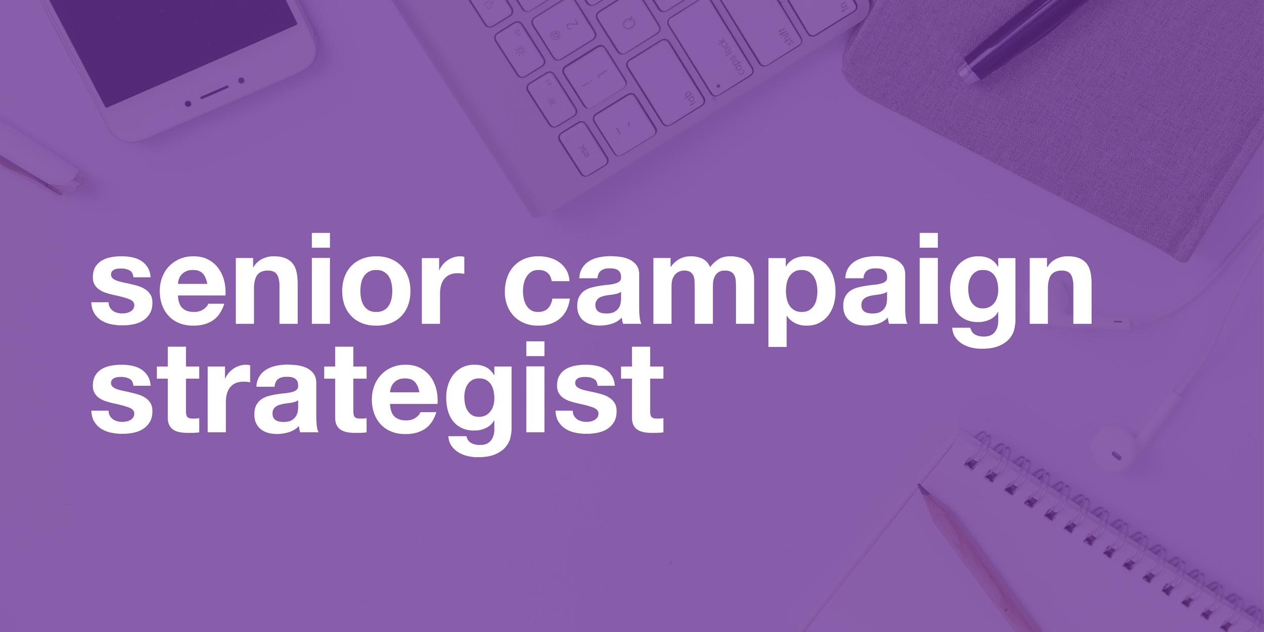 CRST.01_Social_Senior_Campaign_Strategist_Website2 (1).png