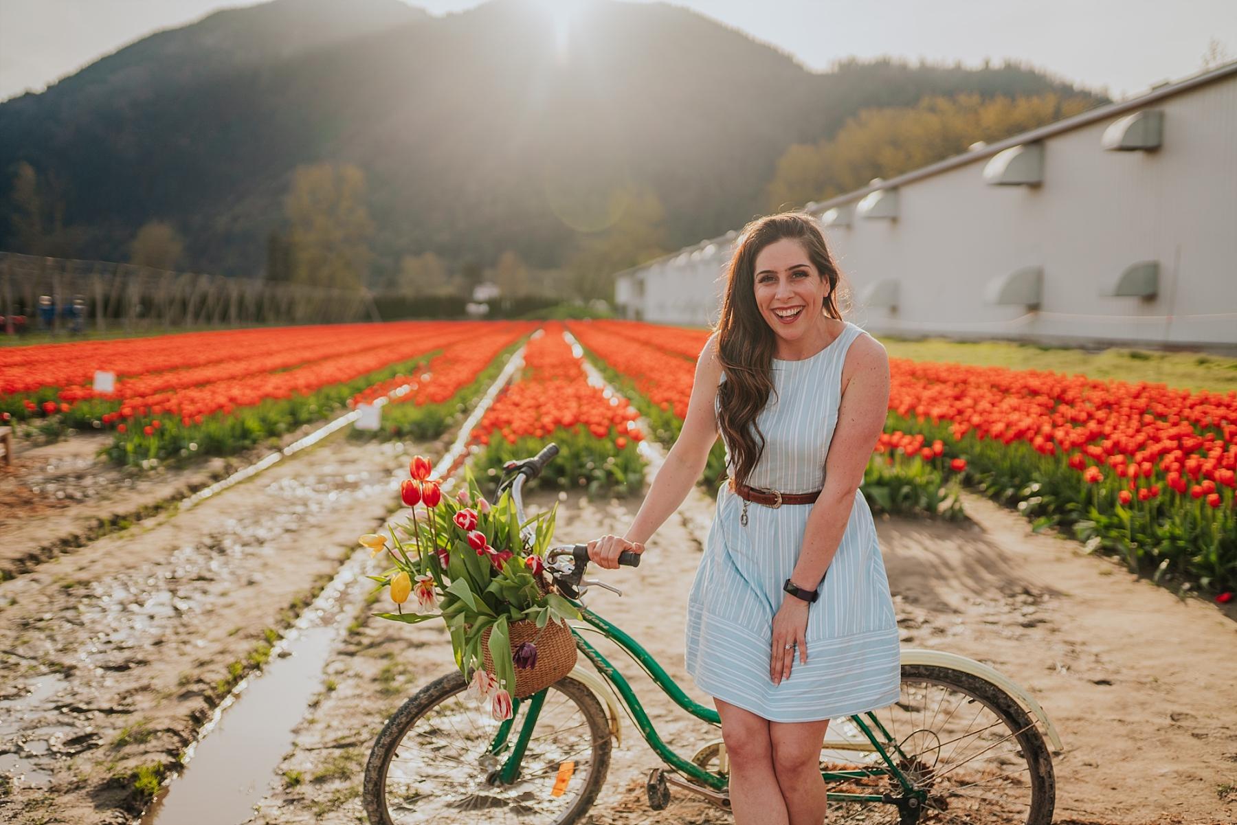 chilliwack tulip festival guide