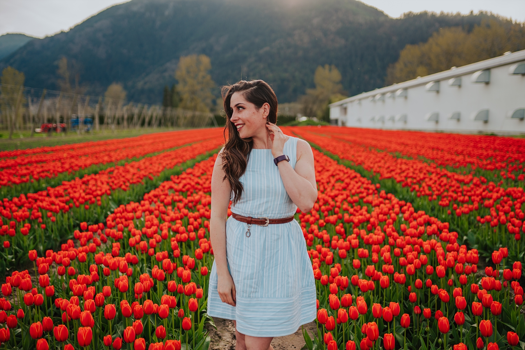 chilliwack tulip festival photo guide