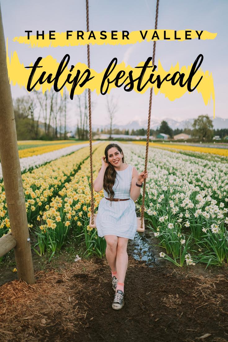 chilliwack fraser valley tulip festival