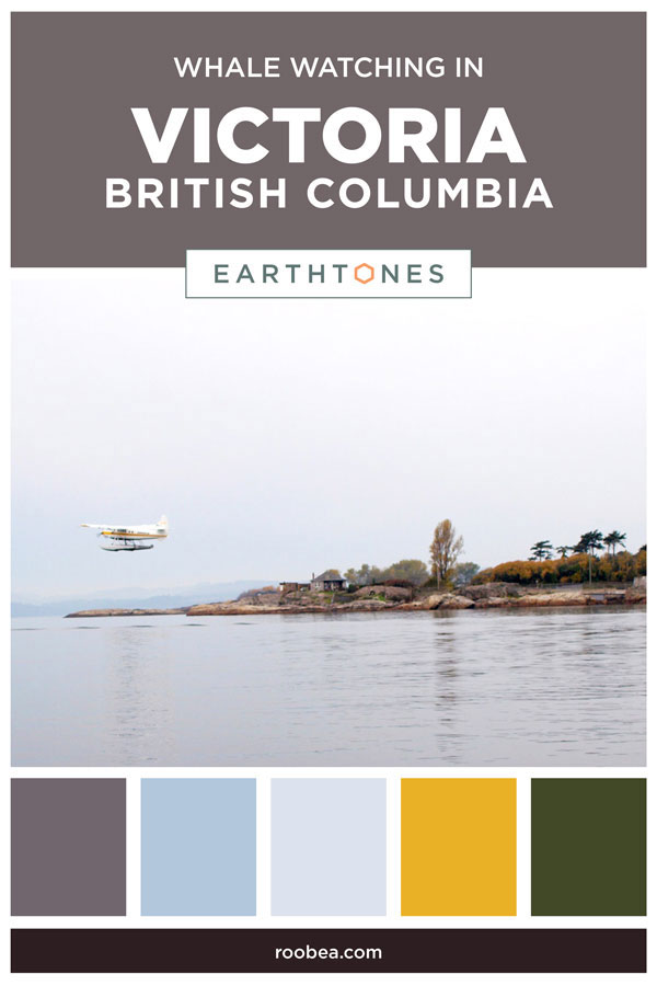 Whale Watching in Victoria, British Columbia | Earthtones Travel + Design Blog | Roo Bea Design Co
