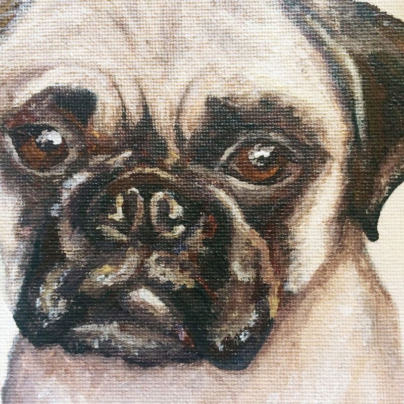Face of a Pug Painting | Earthtones Travel + Design Blog | Roo Bea Design Co