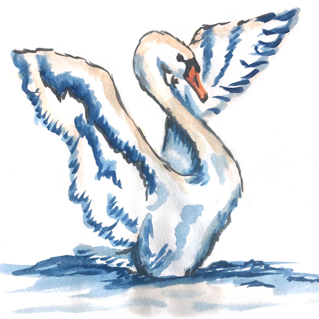 Swan Watercolor Illustration | Earthtones Travel + Design Blog | Roo Bea Design Co