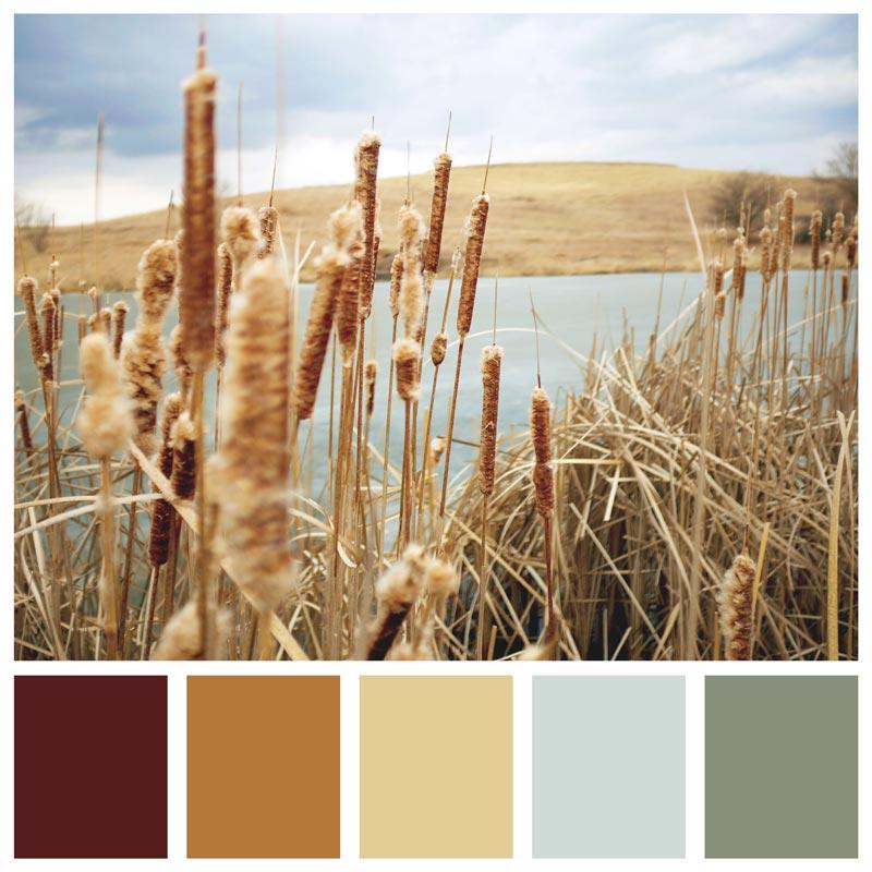 Color Palette: Neutral, Rustic, Fall, Soft, Warm, Natural, Earthy | Yellow Smoke Park - Iowa | Earthtones Travel + Design Blog | Roo Bea Design Co