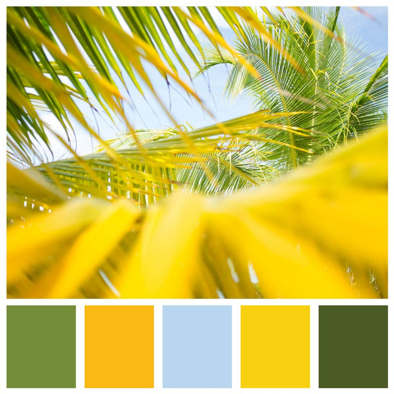 Color Palette: Bright, Lush, Tropical, Golden, Warm, Beach & Summer | Big Corn Island, Nicaragua | Earthtones Travel + Design Blog | Roo Bea Design Co.