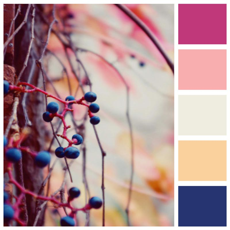 Color Palette: Warm, Bold, Pastel, Berry, Fall, Fruity & Chic | Berlin, Germany | Earthtones Travel + Design Blog | Roo Bea Design Co